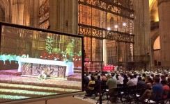 Apostolado Seglar y Acción Católica celebran Pentecostés en la Catedral