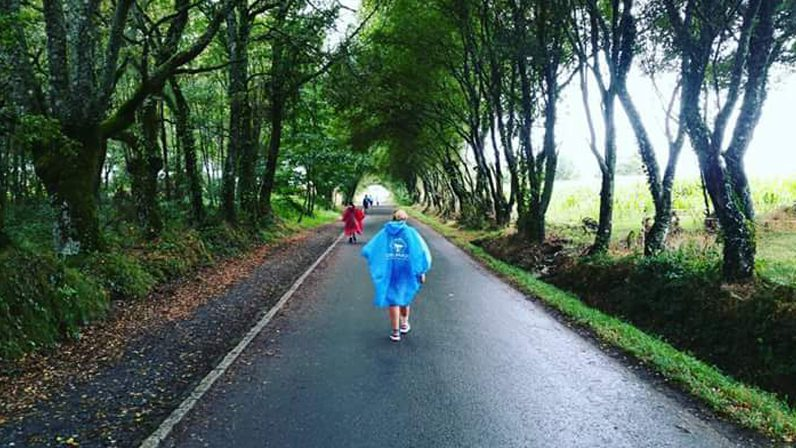 El Camino de Santiago y el camino de la vida