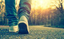 Taller para padres de adolescentes en el COF Aljarafe