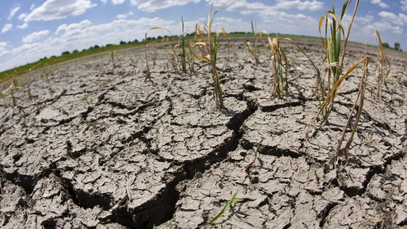 Ante la grave sequía que padecemos