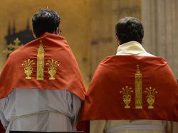 Vigilia de Pentecostés 2017 en la Catedral de Sevilla