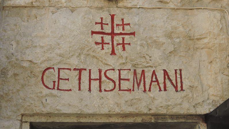 'Peregrinación diocesana a Tierra Santa', carta pastoral del Arzobispo de Sevilla
