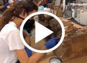 video-Restauraciones-Magdalena_video
