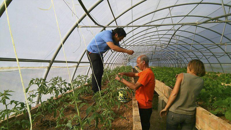 Charitas I: Ecocajas de Bioalverde, tesoros ecológicos cargados de solidaridad