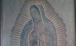Pro-Vida Mairena del Alcor celebra el día de la Virgen de Guadalupe