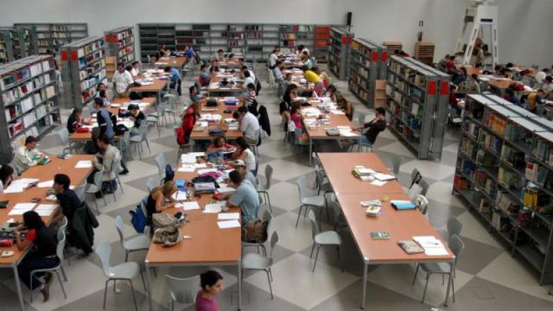 La Hermandad de los Estudiantes y Cáritas Universitaria crean una beca para el alumnado afectado por la COVID-19