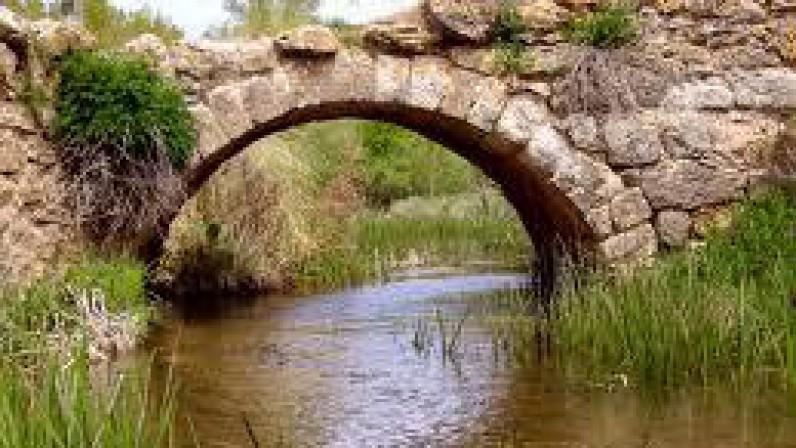 Puente o muro