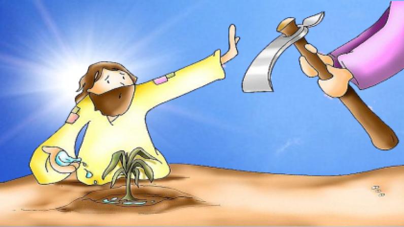 LA PACIENCIA DE DIOS