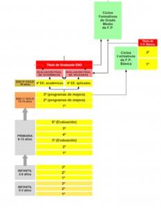 organigrama 2