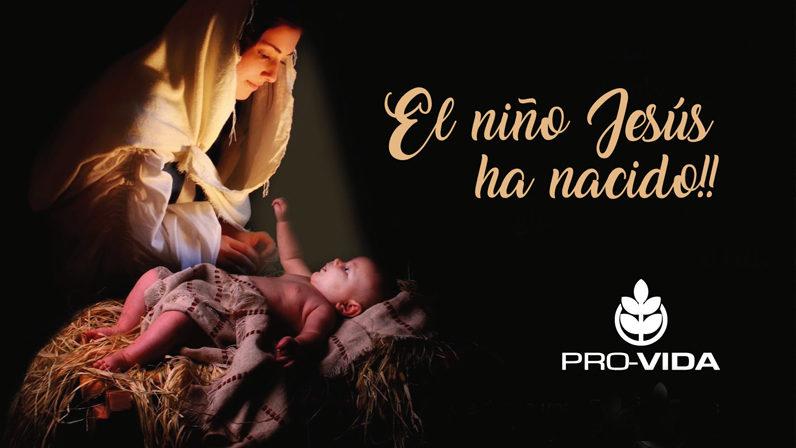 Eucaristía por la solemnidad de los Santos Inocentes