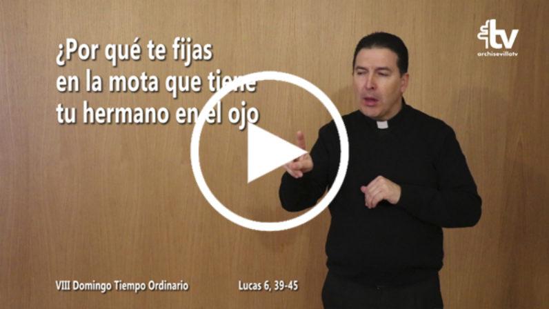 Evangelio del VIII Domingo de Tiempo Ordinario en LSE (ciclo C)