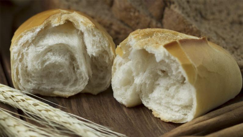 'Lo reconocieron al partir el pan', cartas pastoral del Arzobispo de Sevilla