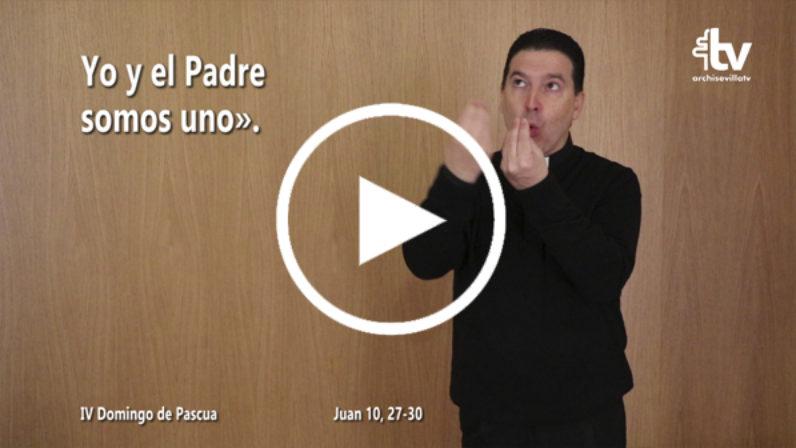 Evangelio del IV Domingo de Pascua (ciclo C) en LSE