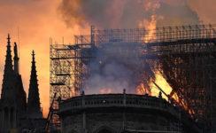 """Monseñor Asenjo sobre el incendio en Notre Dame: """"Dios quiera que la reconstrucción que se anuncia sea signo del resurgimiento de la cultura cristiana europea"""""""