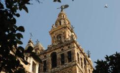 Ampliación de horarios y otras novedades en las visitas culturales de la Catedral y la Giralda