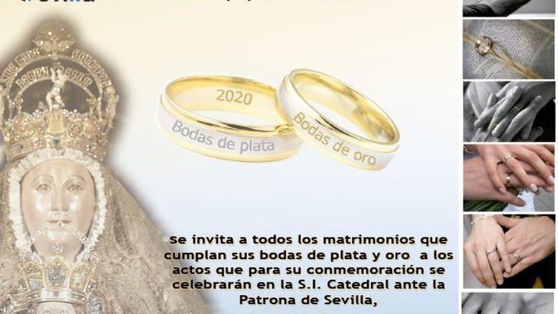 Celebración de las bodas de oro y plata matrimoniales en la Catedral