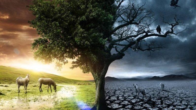 """Elogio de la vida """"versus"""" Apología de la muerte"""