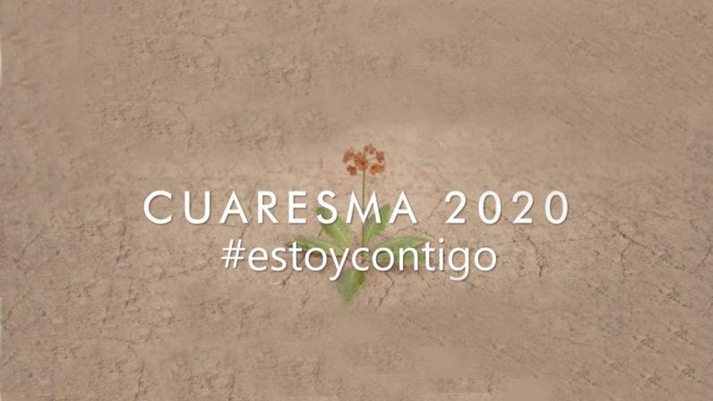 #EstoyContigo, la iniciativa de la Pastoral Juvenil diocesana para aliviar la soledad durante la cuarentena