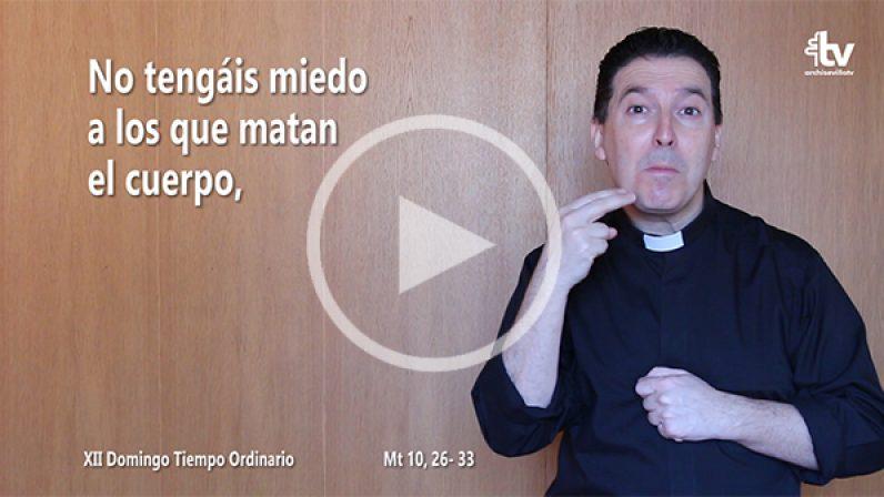 Evangelio del XII Domingo de Tiempo Ordinario (ciclo A) en LSE