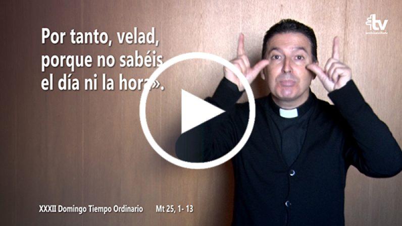 Evangelio del XXXII Domingo de Tiempo Ordinario (ciclo A) en LSE