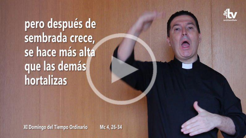 Evangelio del XI Domingo del Tiempo Ordinario (Ciclo B) en LSE